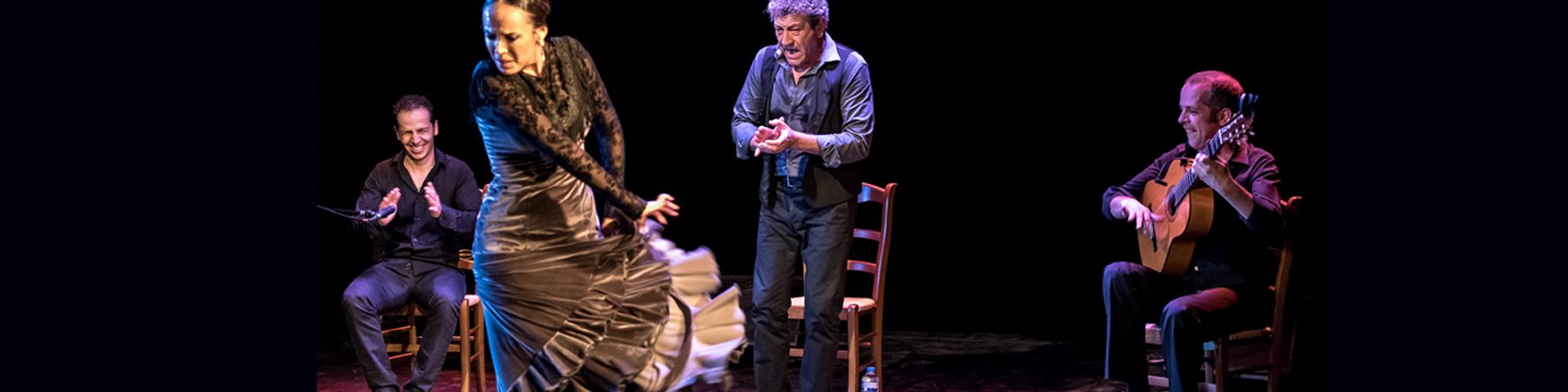 Flamenco por un poeta